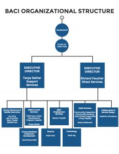 baci-organizational-structure-2016